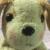 송2님의 프로필 사진